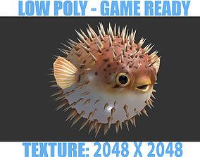 3D asset Puffer fish01