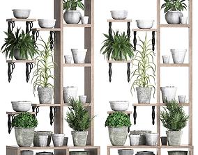 Plants collection Vertical gardening 28 3 3D model