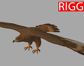 bird Eagle 3D model rigged