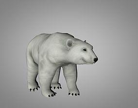 3D asset Polar White Bear