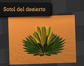 3D model game-ready Sotol Desert Mexican Plant