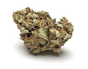 Cannabis Bud 01 3D