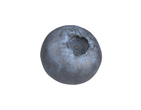Photorealistic Blueberry 3D Scan 2