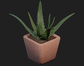 3D asset realtime Potted Aloe Vera