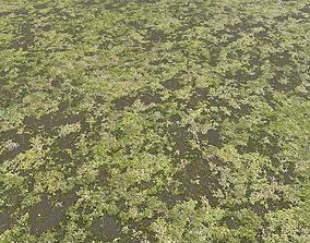 Ground terrain swamp PBR pack 1 3D model