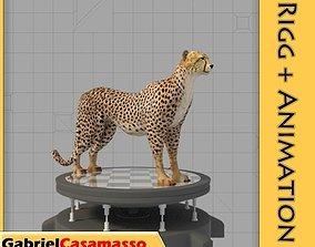 3D animated cheetah Cheetah