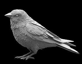 bird 01 3D print model