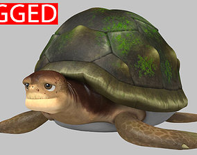Turtle 3D model rigged