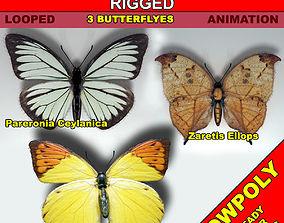 3D asset Butterflies Pack