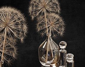 heracleum Decor set 12 Heracleum plant 3D model