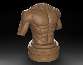 3D print model Muscular Male Torso