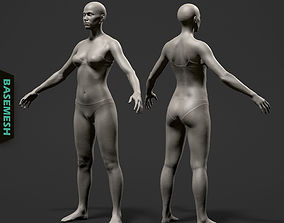 3D Average Female Body Basemesh