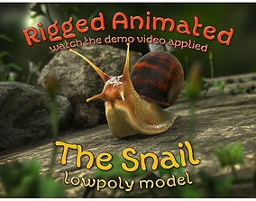 3D asset The Snail