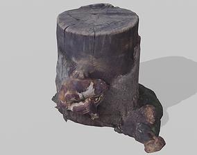 3D model Realistic Stump scanned