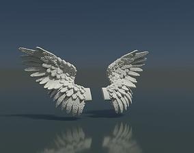 Wings 3D print model