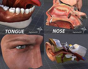 Human Four Senses seeing 3D