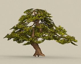 Game Ready Tree 21 3D asset