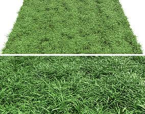 Green lawn 3D