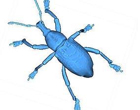 3D printable model Beetle