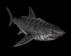 3D model rigged Megalodon Shark Dinosaur