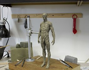 3D printable model Anatomy human