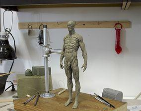 3D printable model Anatomy human