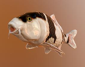 koi fish 3D model animated realtime
