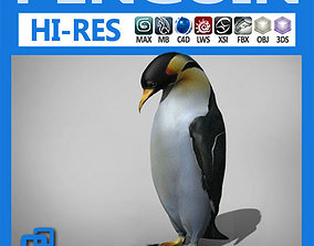 animal 3D Penguin