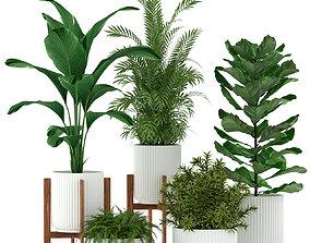 Plants collection 194 3D model