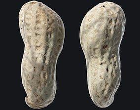 3D model Peanut B