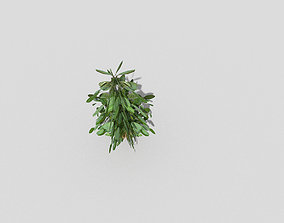 3D asset realtime Low poly Plant low
