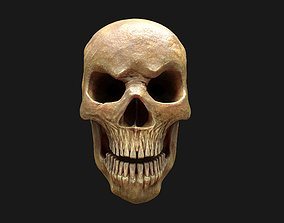 3D model Stylized Human Skull - Highpoly and Lowpoly