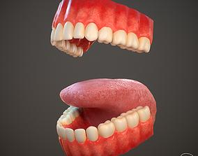 Teeth and Tongue PBR 3D model