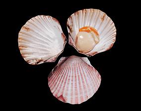 Scallop shellfish 3D asset