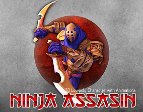 Ninja Assasin 3D asset
