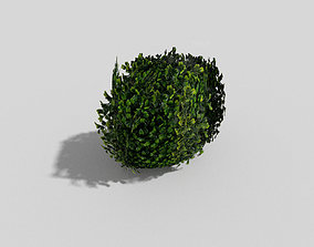 3D asset realtime low poly shrub forest