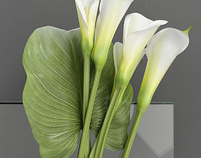 3D Bouquet with Calla lilies
