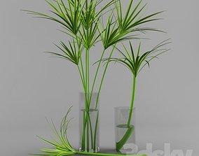 plant 3D print model