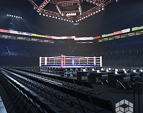 audience 3D Boxing Arena