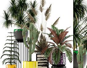 3D Plants collection 139