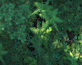 3D model Forest Nature Scene for Cinema 4D with Octane