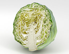 3D Half a Cabbage