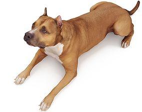 Staffordshire Lying Dog 3D model