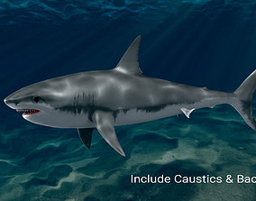 Low poly Rigged and Animated Big white shark 3D model