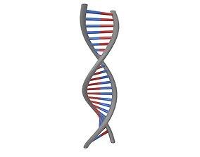 DNA Molecule v1 004 3D model