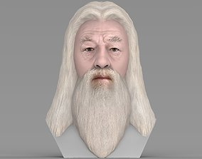 Dumbledore from Harry Potter bust for full color 3D 1