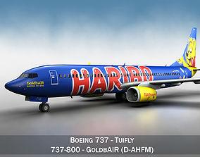 air-plane 3D model Boeing 737-800 GoldbAIR