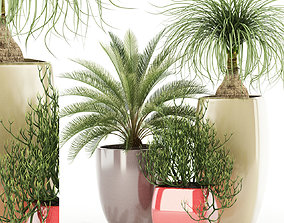 3D model Plants collection 101 Awesomeplanters