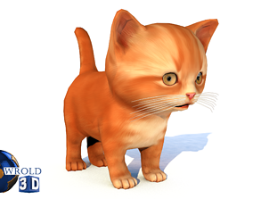 animated Cat Cute Kitten Lowpoly Rigged 3D Model