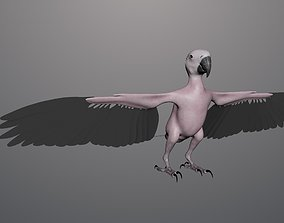Base model of Macaw